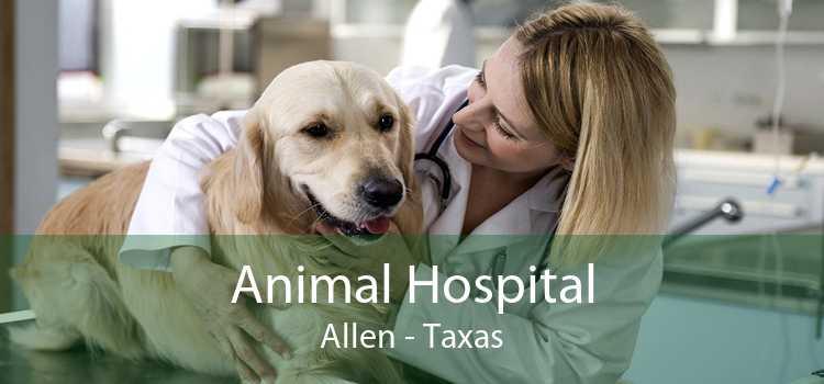 Animal Hospital Allen - Taxas