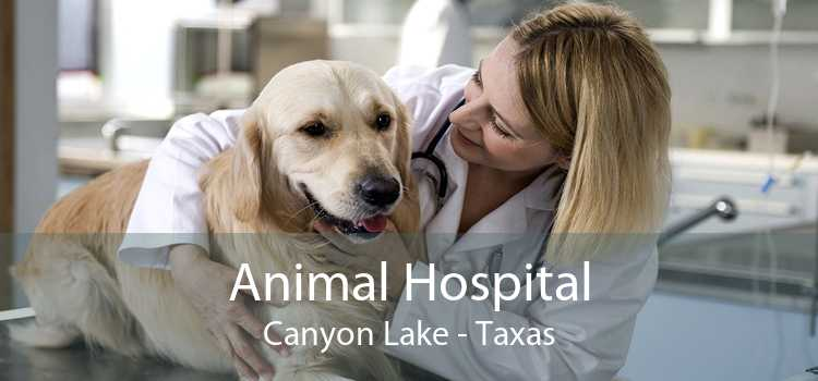 Animal Hospital Canyon Lake - Taxas
