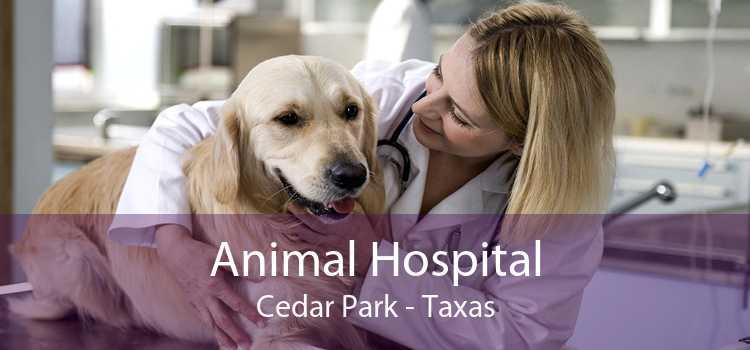 Animal Hospital Cedar Park - Taxas