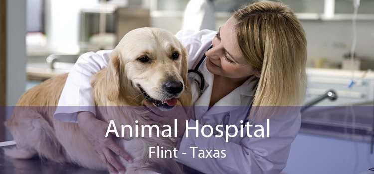 Animal Hospital Flint - Taxas