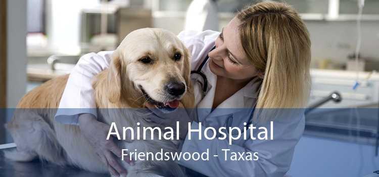 Animal Hospital Friendswood - Taxas