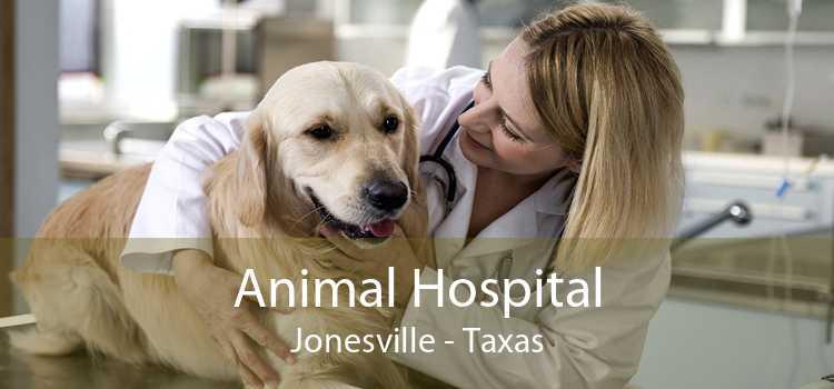 Animal Hospital Jonesville - Taxas