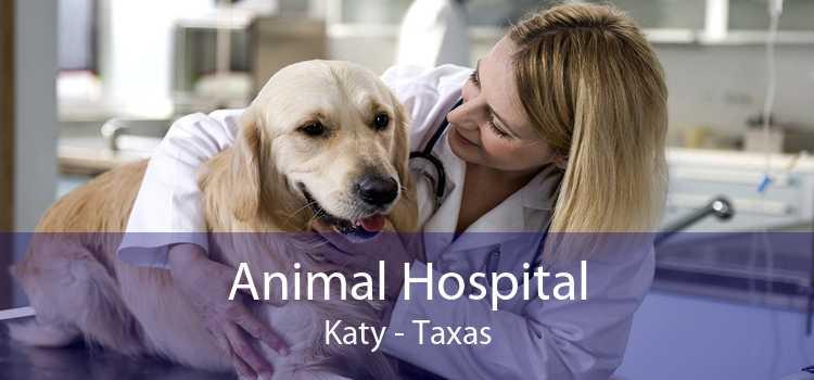 Animal Hospital Katy - Taxas