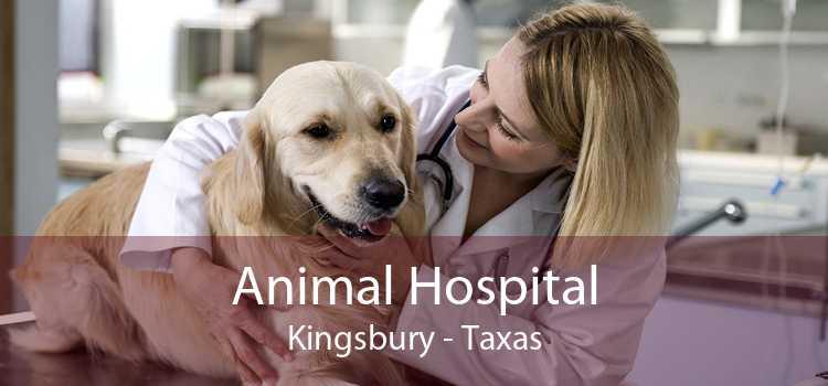 Animal Hospital Kingsbury - Taxas