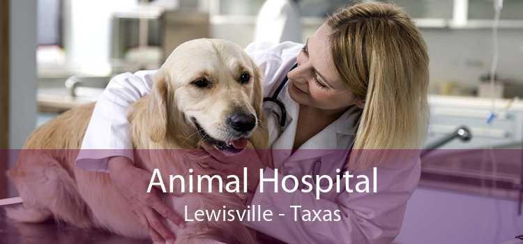 Animal Hospital Lewisville - Taxas