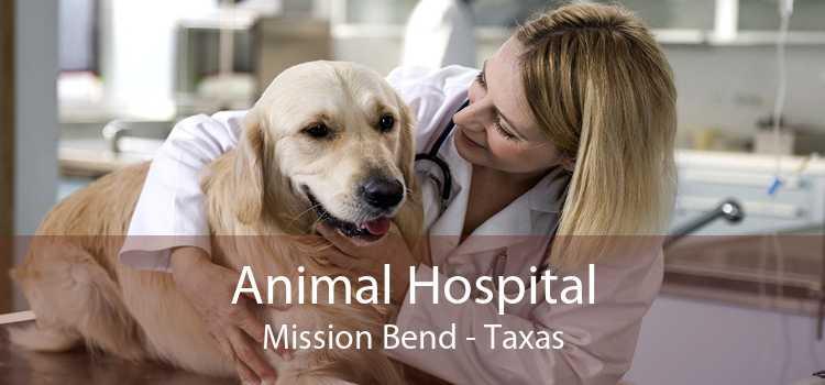 Animal Hospital Mission Bend - Taxas
