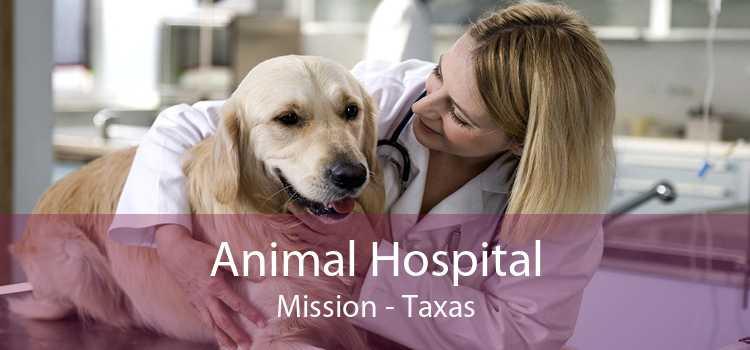 Animal Hospital Mission - Taxas
