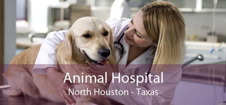 Animal Hospital North Houston - Taxas