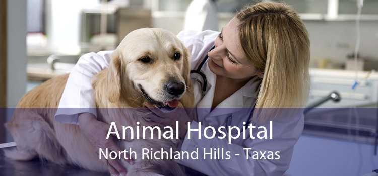 Animal Hospital North Richland Hills - Taxas