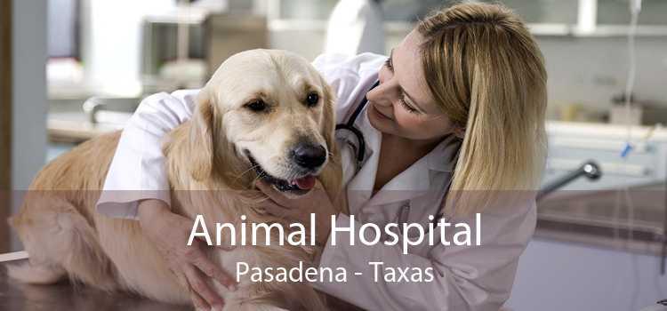 Animal Hospital Pasadena - Taxas