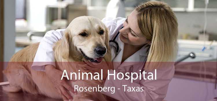 Animal Hospital Rosenberg - Taxas