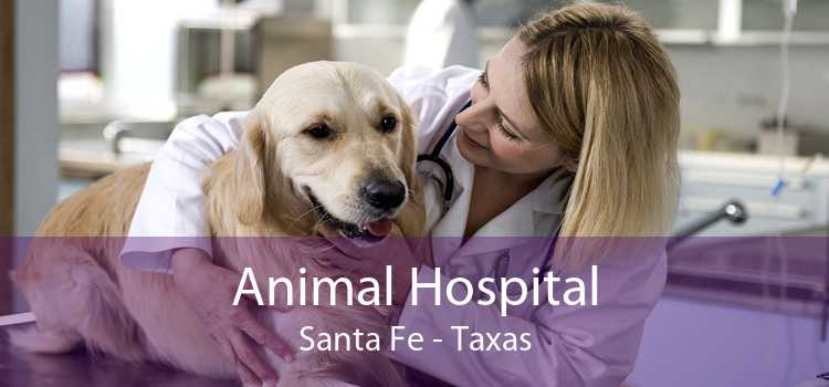 Animal Hospital Santa Fe - Taxas