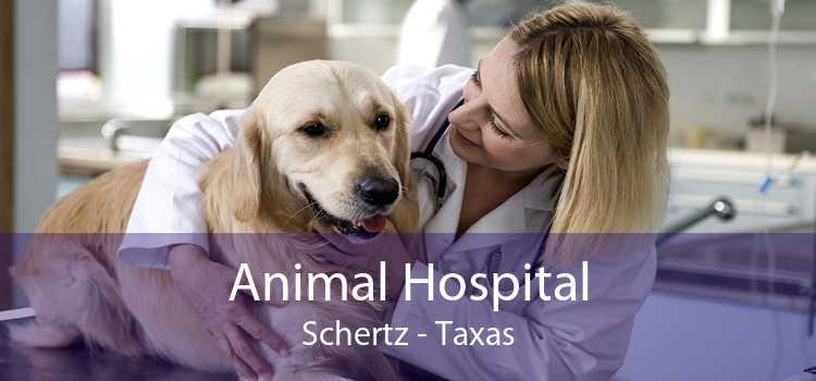 Animal Hospital Schertz - Taxas