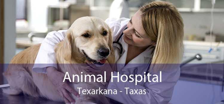 Animal Hospital Texarkana - Taxas