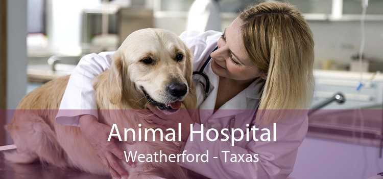 Animal Hospital Weatherford - Taxas