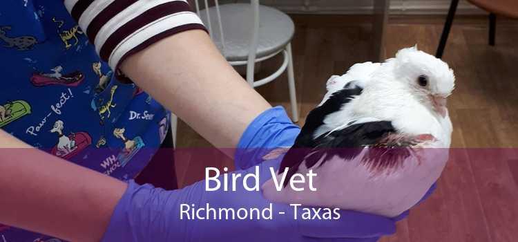 Bird Vet Richmond - Taxas
