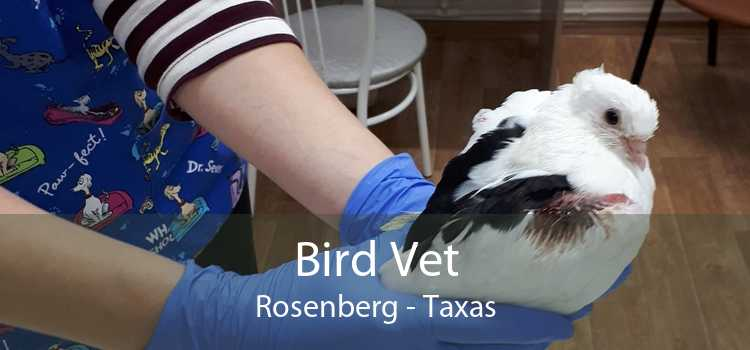 Bird Vet Rosenberg - Taxas