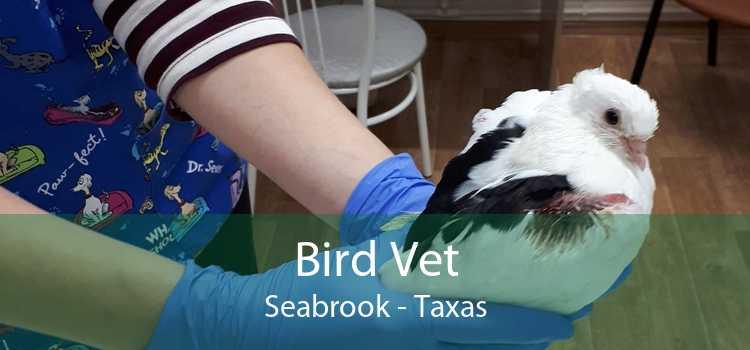 Bird Vet Seabrook - Taxas
