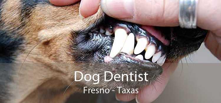 Dog Dentist Fresno - Taxas