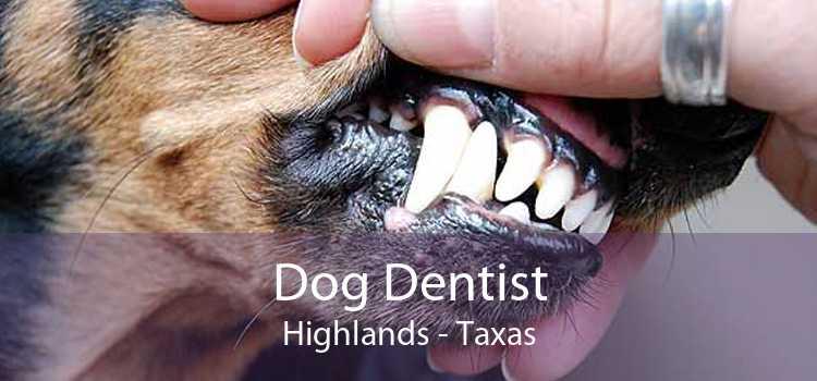 Dog Dentist Highlands - Taxas
