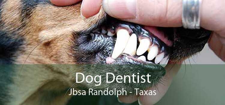 Dog Dentist Jbsa Randolph - Taxas
