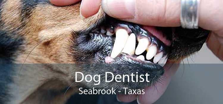 Dog Dentist Seabrook - Taxas