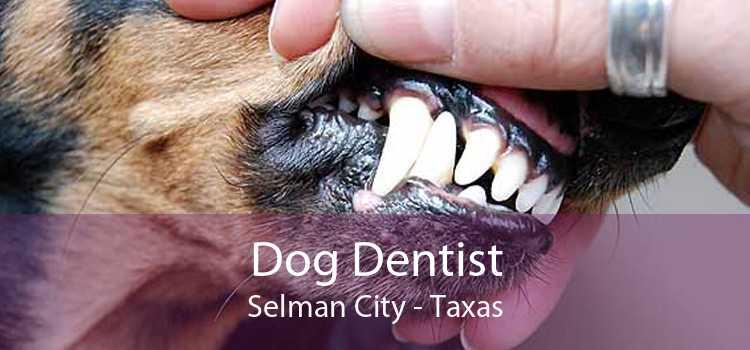 Dog Dentist Selman City - Taxas