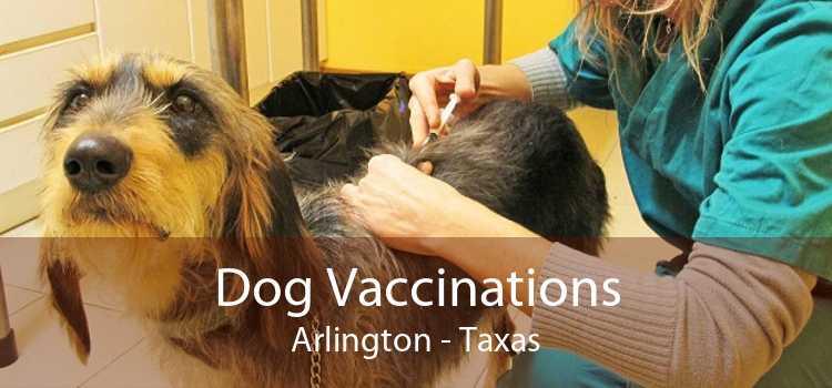 Dog Vaccinations Arlington - Taxas