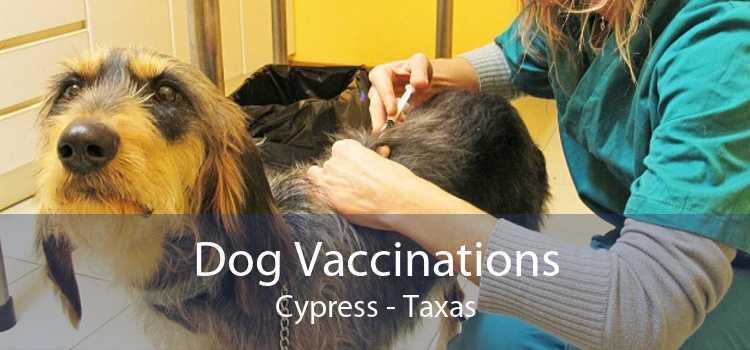 Dog Vaccinations Cypress - Taxas