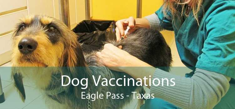 Dog Vaccinations Eagle Pass - Taxas