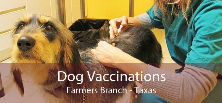 Dog Vaccinations Farmers Branch - Taxas