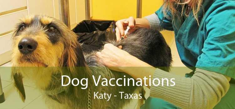 Dog Vaccinations Katy - Taxas