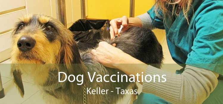 Dog Vaccinations Keller - Taxas