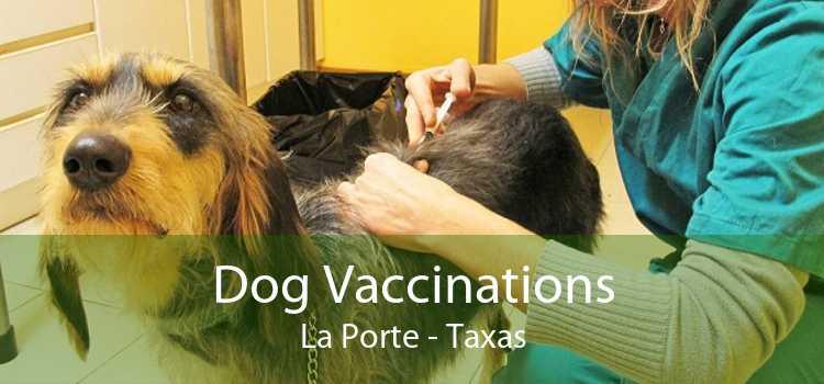 Dog Vaccinations La Porte - Taxas