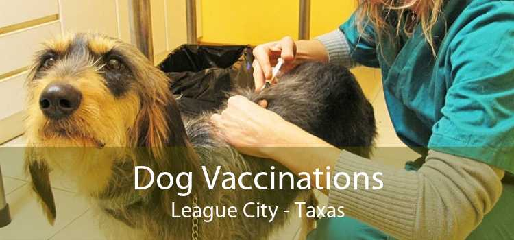 Dog Vaccinations League City - Taxas
