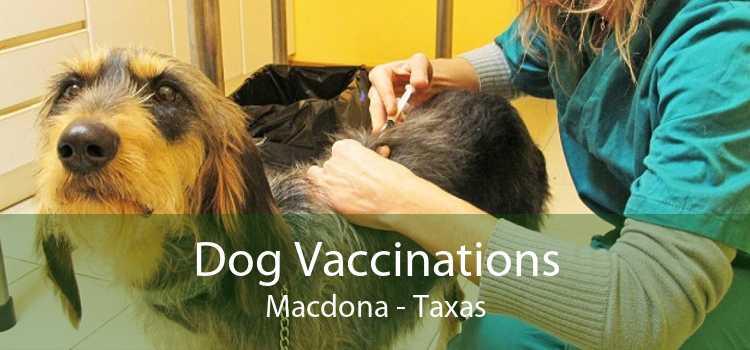 Dog Vaccinations Macdona - Taxas