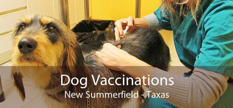 Dog Vaccinations New Summerfield - Taxas