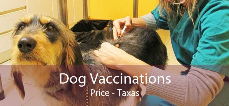 Dog Vaccinations Price - Taxas