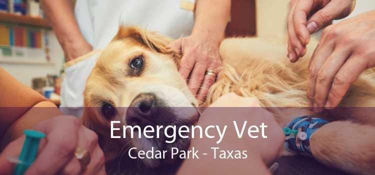 Emergency Vet Cedar Park - Taxas