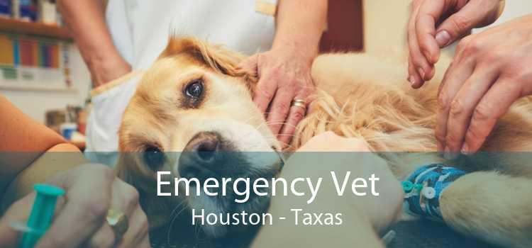 Emergency Vet Houston - Taxas