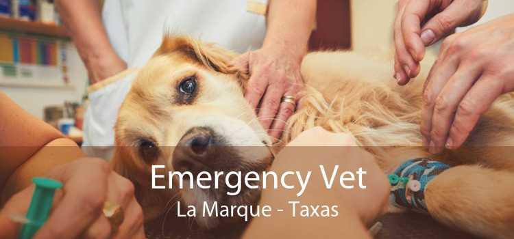Emergency Vet La Marque - Taxas