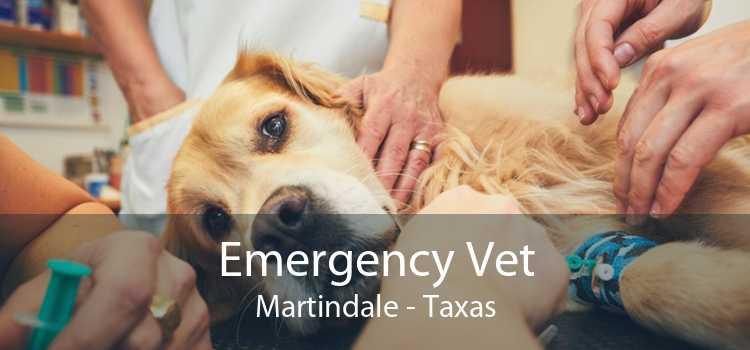 Emergency Vet Martindale - Taxas