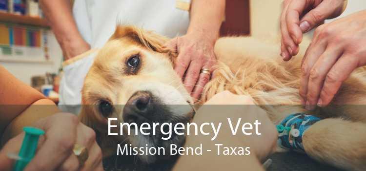 Emergency Vet Mission Bend - Taxas