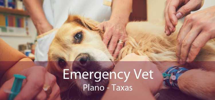 Emergency Vet Plano - Taxas
