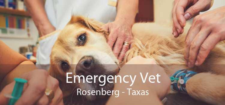 Emergency Vet Rosenberg - Taxas