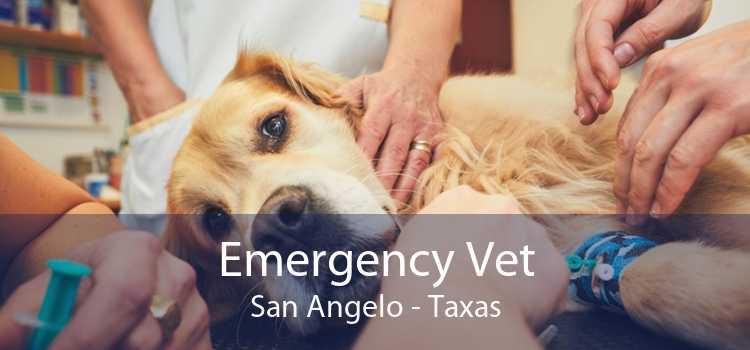 Emergency Vet San Angelo - Taxas