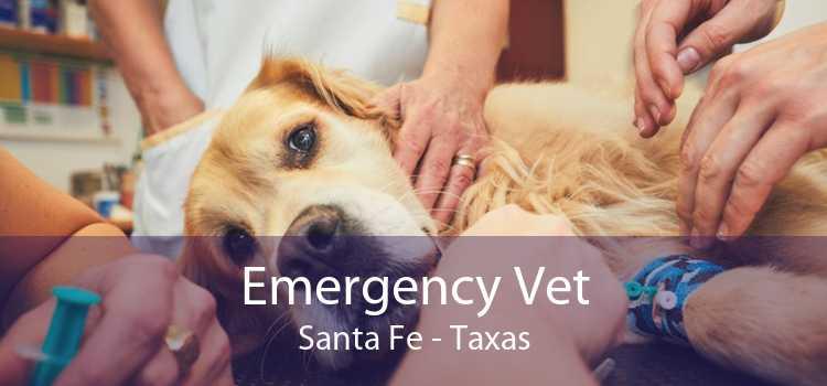 Emergency Vet Santa Fe - Taxas