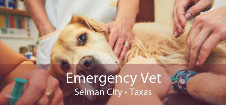 Emergency Vet Selman City - Taxas