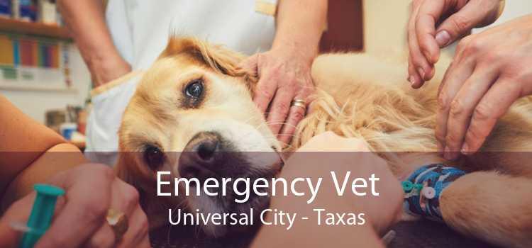 Emergency Vet Universal City - Taxas