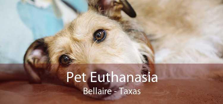 Pet Euthanasia Bellaire - Taxas